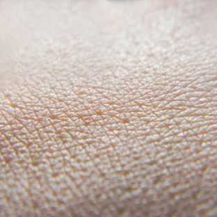 New insights into skin cells could explain why our skin doesn't leak